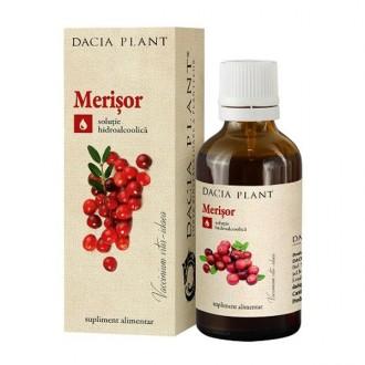 Tinctura de Merisor 50ml Dacia Plant