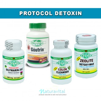 Protocol Detoxin Provita Nutrition