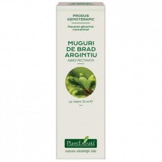 Extract concentrat din muguri de brad - abies pectinata mg 15ml PLANTEXTRAKT