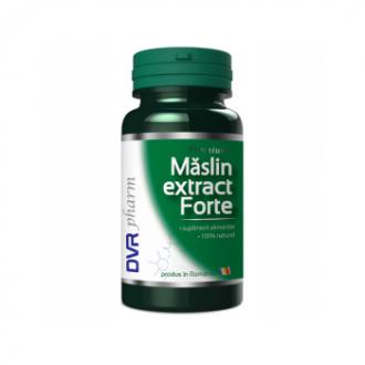 Maslin extract forte 60cps - DVR Pharm