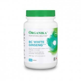 Ginseng Alb de BC 500 mg 100 capsule