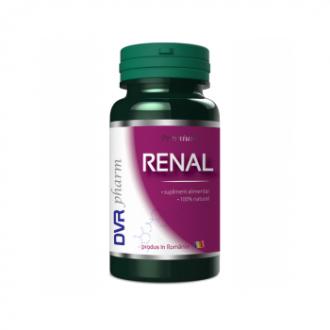 Renal 60cps - DVR Pharm