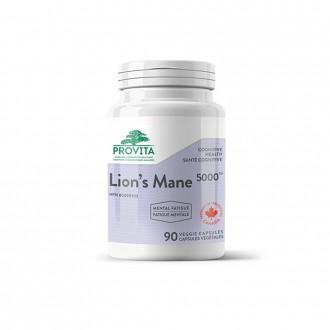 Lion's Mane 5000TM ciuperca Coama leului (Hericium) 500 mg 90 capsule vegetale
