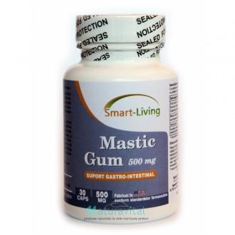 Mastic Gum 500mg 30 capsule