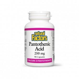 Pantothenic Acid (Vitamina B5) 250 mg 90 capsule